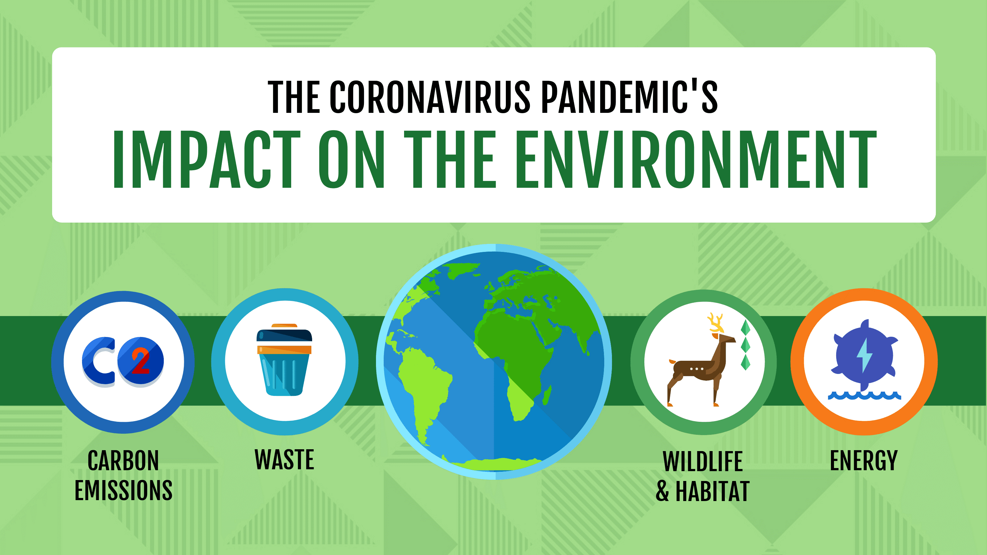 Coronavirus Pandemic's Impact on the Environment Image
